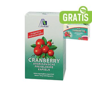 Cranberry Kapseln Schwangerschaft