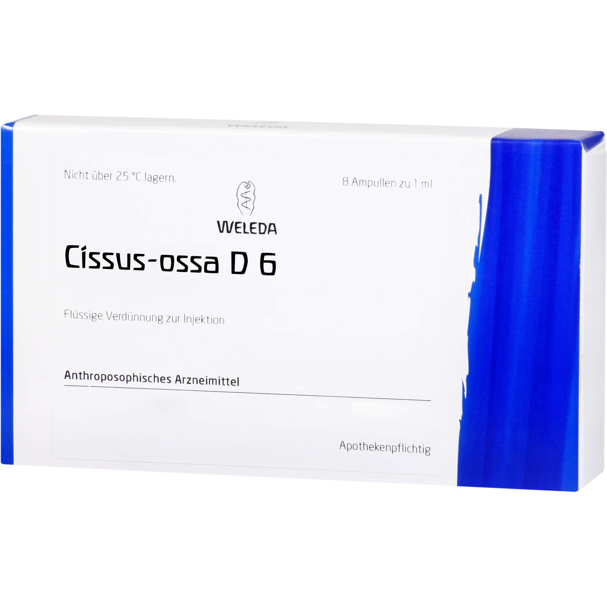 Cissus-Ossa D6