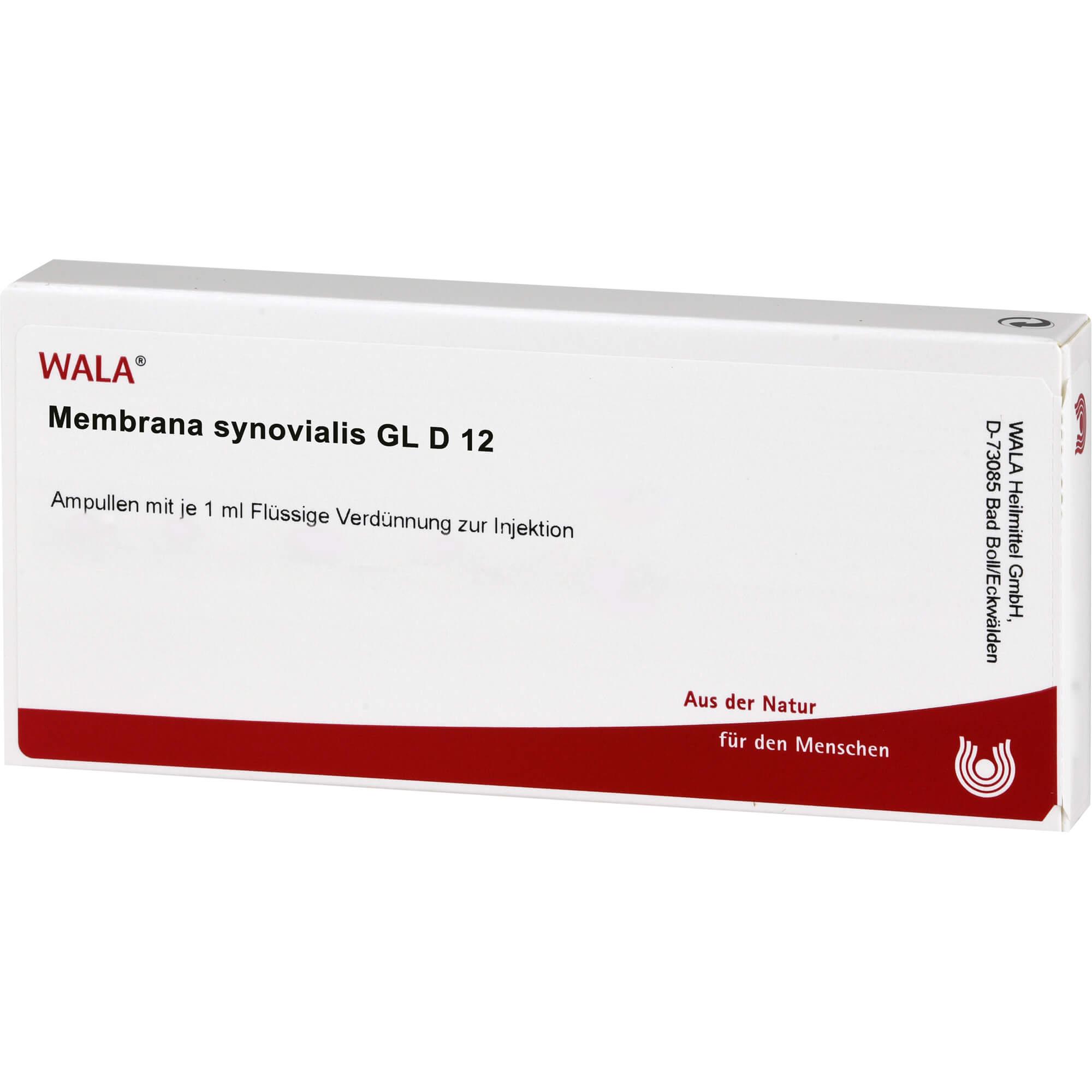 MEMBRANA SYNOVIALIS GL D12