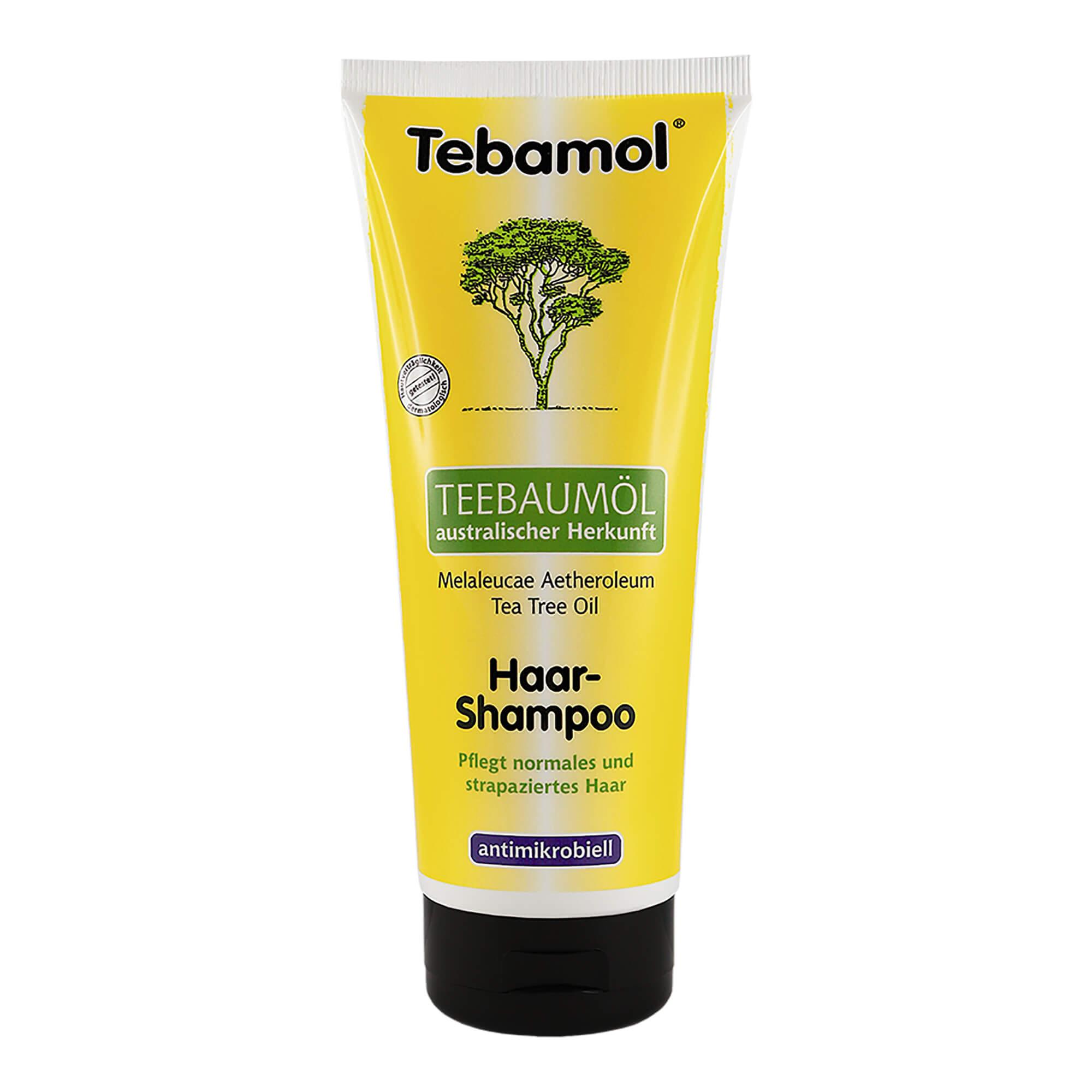 Teebaumöl Haar Shampoo