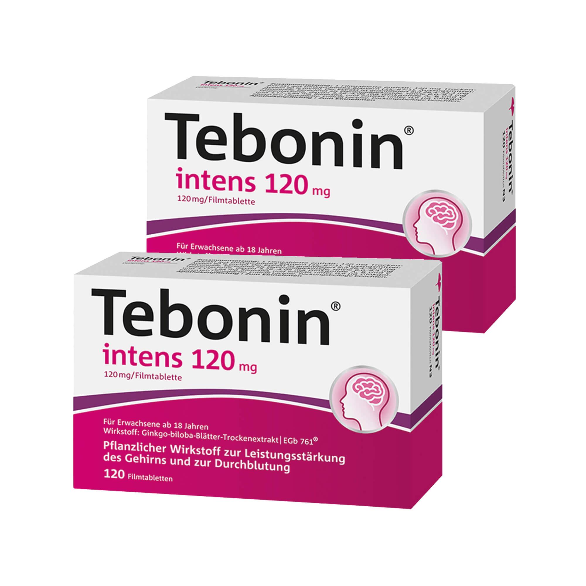 Spar-Set: Tebonin intens 120 mg