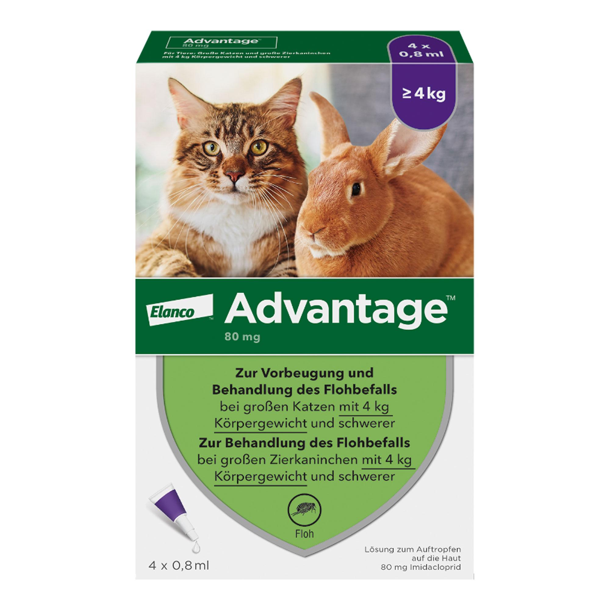 Advantage 80 mg Katze + Zierkaninchen