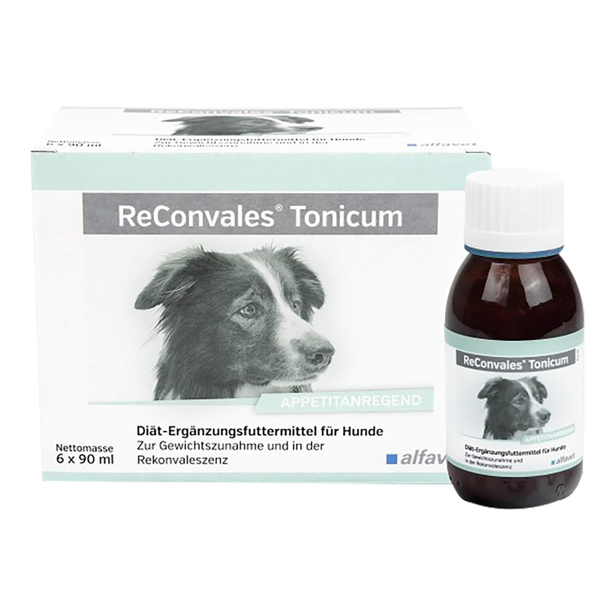 ReConvales Tonicum für Hunde
