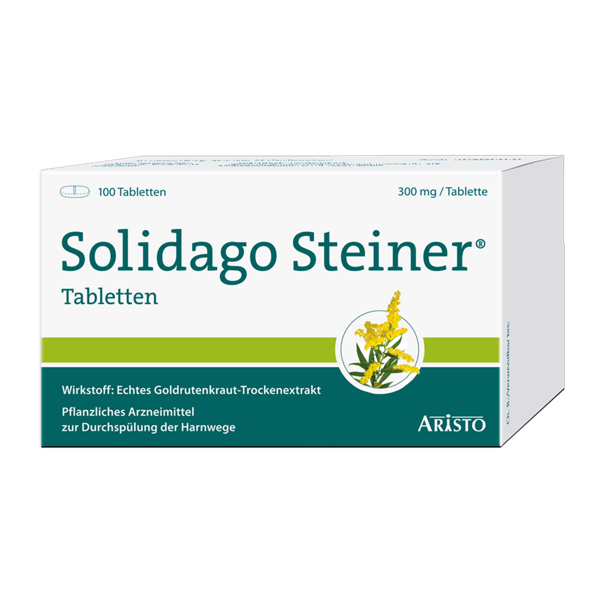 Solidago Steiner